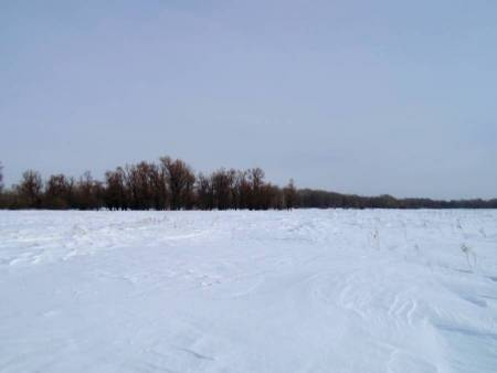 Прокат снегоходов Ирбис Динго T125 на рыболовной базе Клевое место