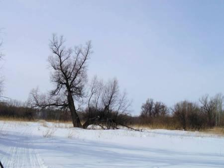 Прогулки на снегоходах с.Каргаполово на рыболовной базе Клевое место.